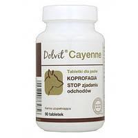 Dolfos Dolvit Cayenne 90 таблеток для собак при копрофагии ( 5484-90 ), фото 2