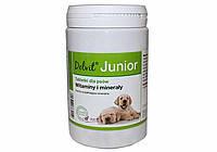 Dolfos Junior 90 таблеток - витаминно-минеральный комплекс для щенков (127-90), фото 2