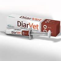 VetExpert DiarVet 20г-средство для собак и кошек с острой или тяжелой формой диареи (201361), фото 2