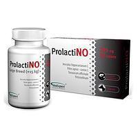 VetExpert ProlactiNO LB (30 таб)- препарат при ложной щенности собак от 15 кг(46138)