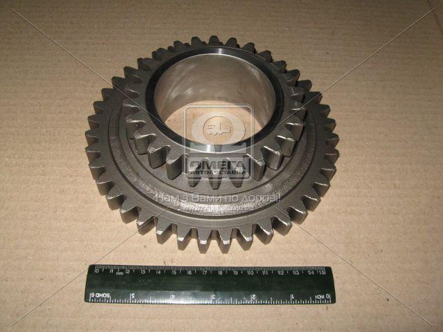 Шестерня вала промежуточного МТЗ 900, 920, 950 (производство  МЗШ). 74-1701056-Б. Ціна з ПДВ.