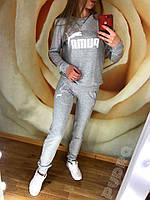 Женский спортивный костюм весна-осень двунить (цвет серый) СП, фото 1