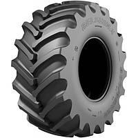 Шины сельхоз 800/65R32 (30,5LR32) Бел-141 178A8 TL БШК