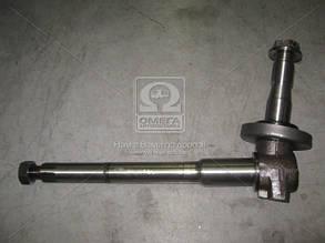 Цапфа поворотная левая МТЗ  (производство  ТАРА). 70-3001085. Ціна з ПДВ.