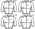Кофта свитшот толстовка Everlast мужская для тренеровок, фото 2