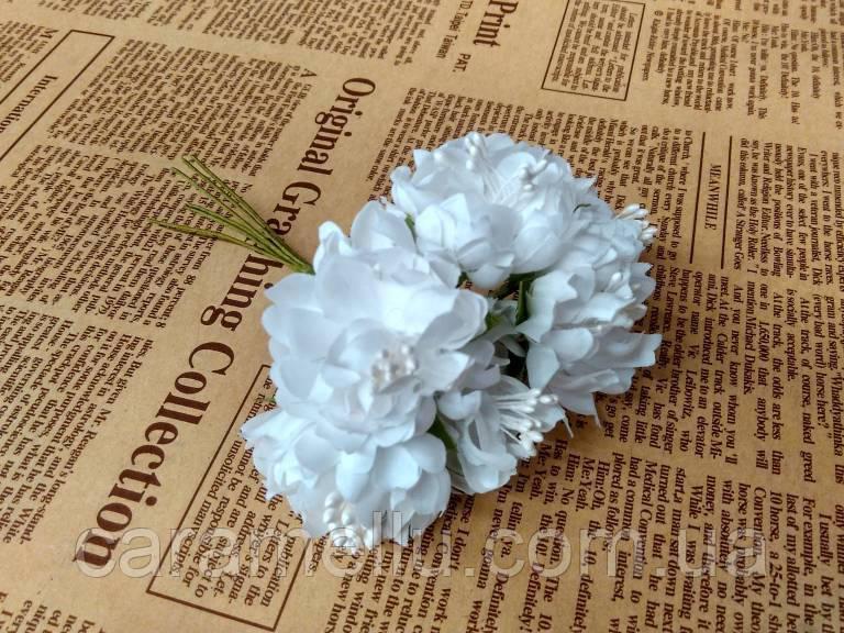 Хризантема пушистая 6 штук. Цвет белый