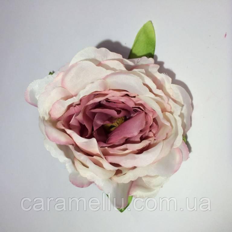Роза пионовидная. Большая