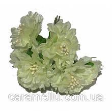 Хризантема 6 штук. Цвет молочный