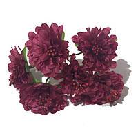 Хризантема 6 штук. Цвет бордовый