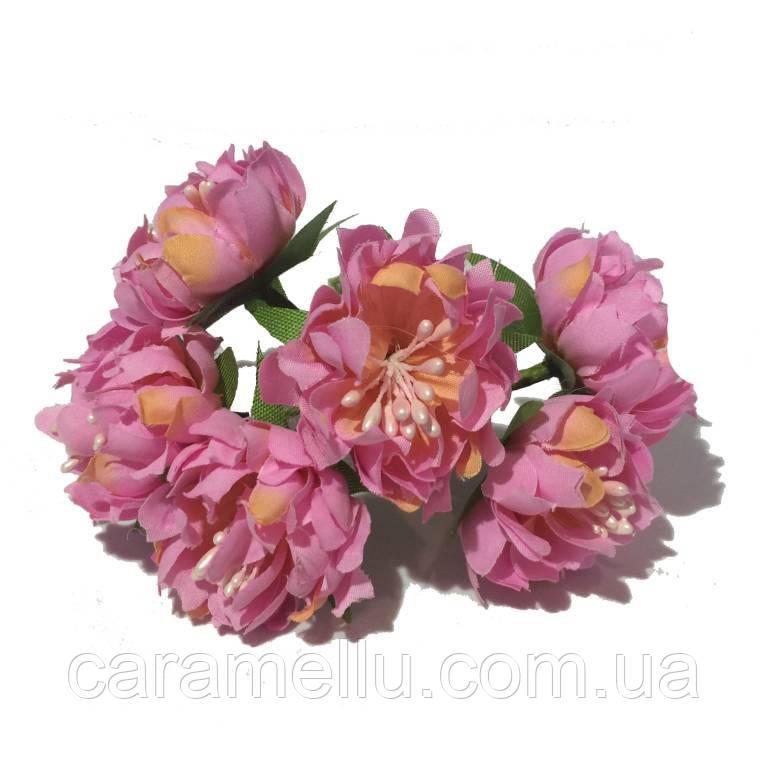 Хризантема пушистая 6 штук. Цвет розовый