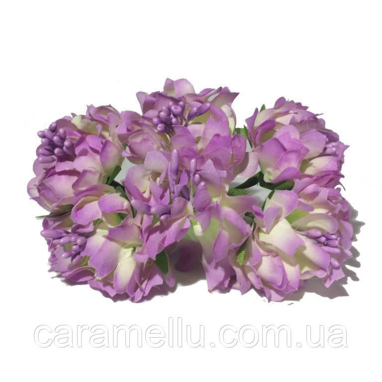Хризантема пушистая 6 штук. Цвет сиреневый