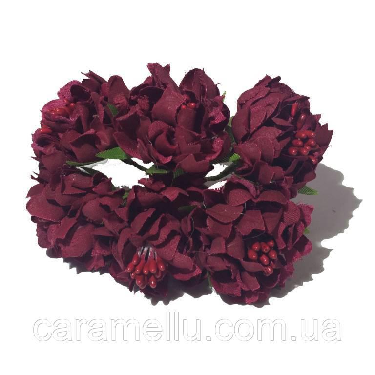 Хризантема пушистая 6 штук. Цвет бордовый
