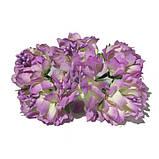 Хризантема пушистая 6 штук. Цвет синий, фото 4