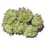 Хризантема пушистая 6 штук. Цвет синий, фото 9