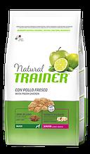Корм Trainer (Трейнер) NATURAL Junior Maxi для цуценят великих порід до 24 місяців, 12 кг