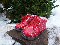 Ботинки для девочек С.ЛУЧ Размер: 22,23,24,25,26,27, фото 1