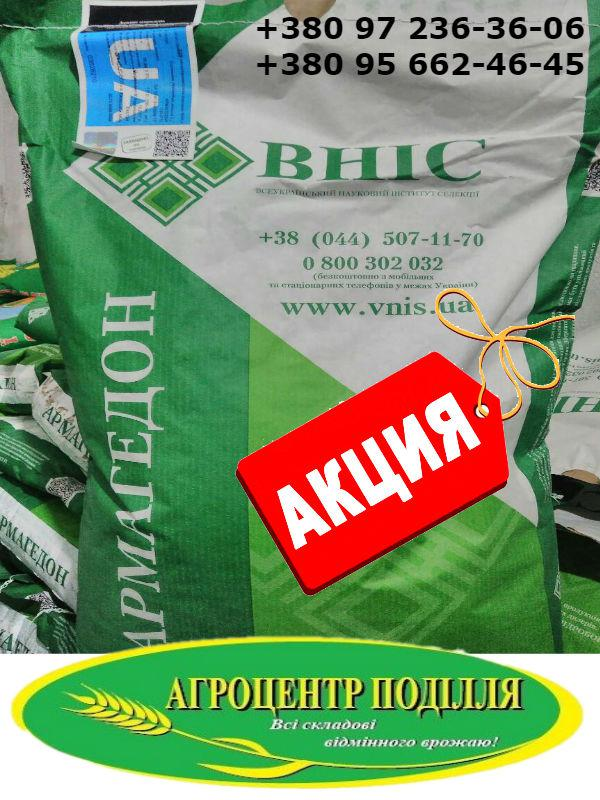 АКЦИЯ-Семена подсолнечника под евролайтинг Армагедон, Карлос 105, Карлос 115