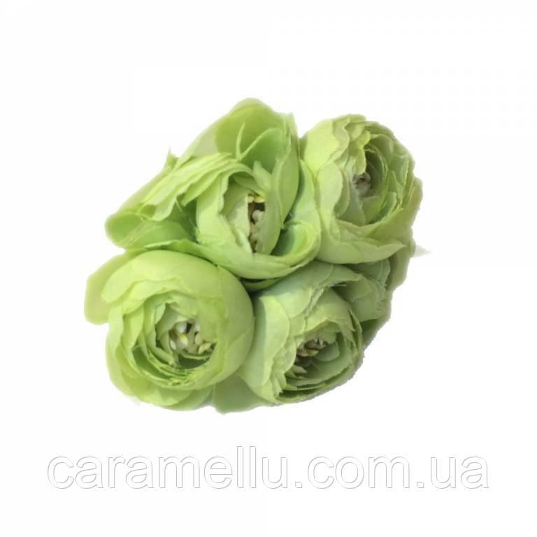 Ранункулюсы. Цвет салатовый.  5 штук
