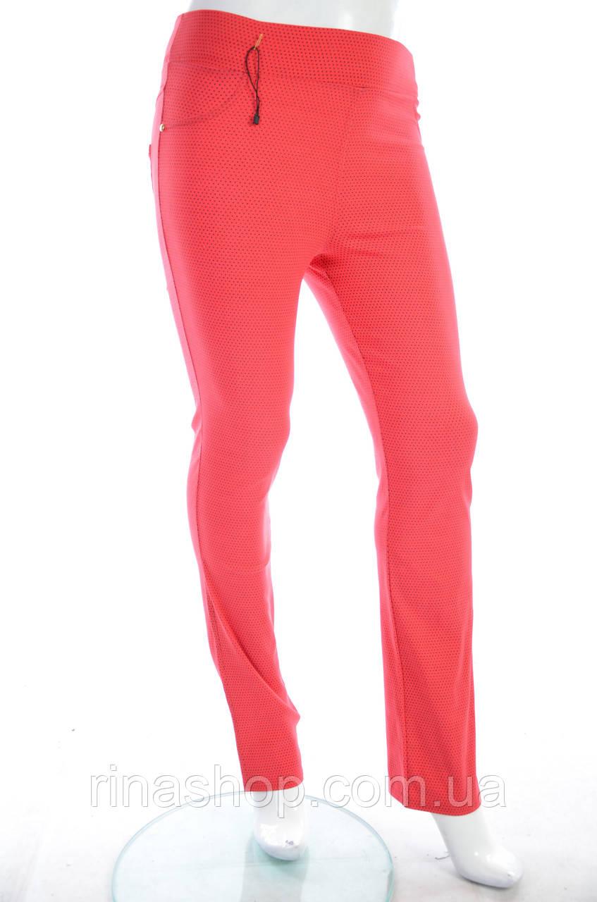 Женские брюки 005
