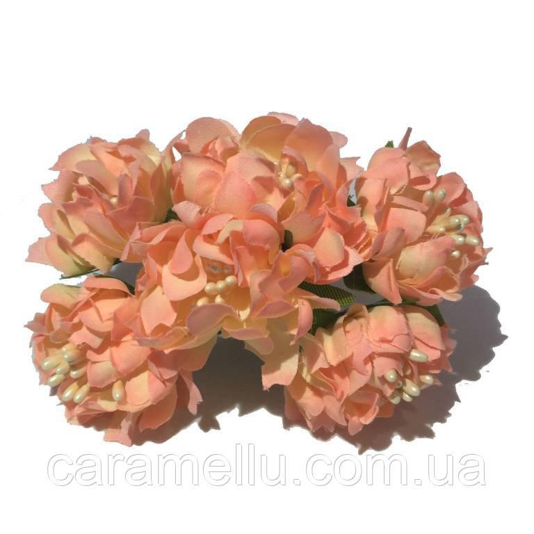 Хризантема пушистая 6 штук. Цвет лососевый