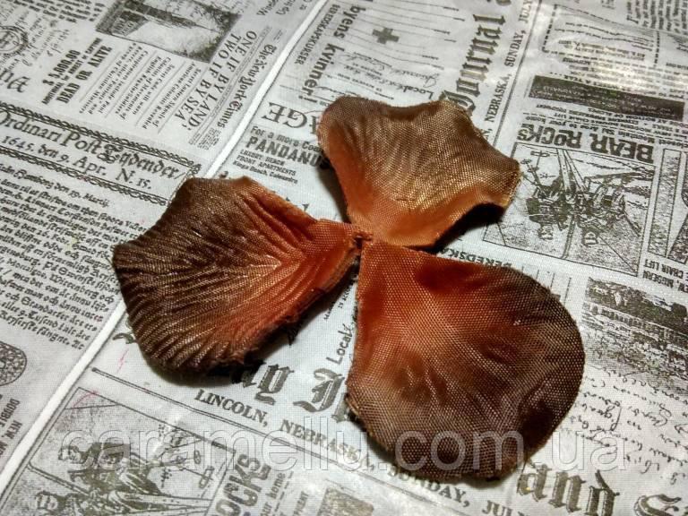 Лепестки роз. Цвет коричневый.  144 штуки