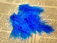 Перо декоративное 5 штук. Цвет ярко-синий