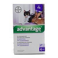 Bayer Advantage  80 -  от блох для кошек и декоративных кроликов весом более 4 кг (1 пипетка), фото 2