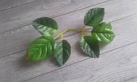 Листки Рози.  Розмір на фото. Ціна за вітку -6 листочків