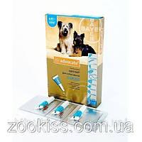 АДВОКАТ — для собак 4-10кг (уп. 3 пипетки, цена за 1 шт) Байер. Германия.