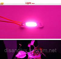 Светодиодный чип фито  для растений  LED 30вт 230в Full Spectrum, фото 2