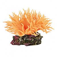 Декорация для аквариума Trixie Растение Anemone 8 см (8888)