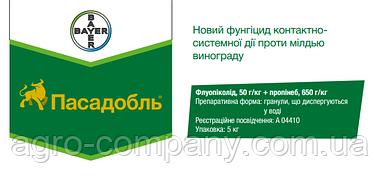 Пасадобль (Флуопіколід, 50 г/кг + пропінеб, 650 г/кг)