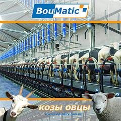 Доильное оборудование BouMatic для коз и овец