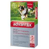 Защита от блох и клещей для собак 10-25 кг BAYER Advantix, 1 пипетка
