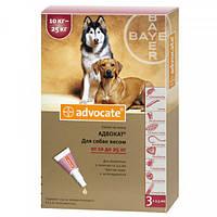 Средство от блох и клещей для собак 10-25 кг Bayer Advocate, 1 пипетка