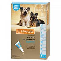 Средство от блох и клещей для собак 4-10 кг Bayer Advocate