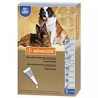 Средство от блох и клещей для собак более 25 кг Bayer Advocate, 1 пипетка