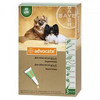 Средство от блох и клещей для собак до 4 кг Bayer Advocate, 1 пипетка