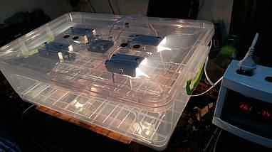 Автоматический инкубатор Курочка Ряба в пластиковом корпусе, фото 2