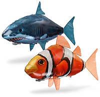 Летающая рыба Air Swimmers (рыба клоун)