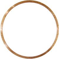 Кольцевой алмазный диск для криволинейной резки в двух направлениях RING GRANITE  (01453034020)