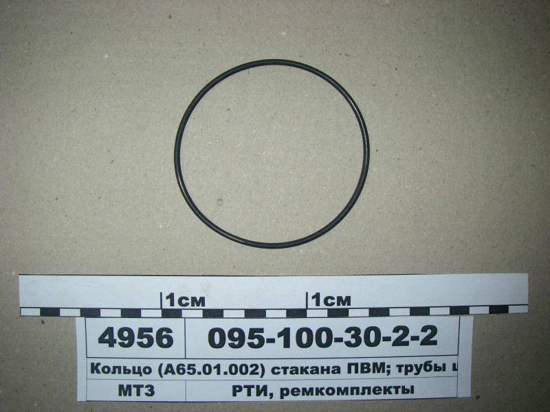 Кольцо 095-100-30-2-2 (А65.01.002) (стакана ПВМ; трубы шкворня) (пр-во Рось-Гума) 095-100-30-2-2