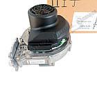 Вентилятор RG148 Viessmann Vitodens WB2B 45-60 кВт., фото 3