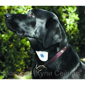 Ошейник АнтиЛай Bark Control Dog Collar,Ошейник от лая для собак , фото 3