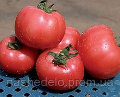 Грифон (8007) Ф1 500 сем. томат Нунемс