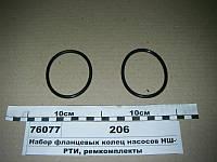 Набор фланцевых колец насосов НШ-100А (ЭО-2621, К-700, 701) (пр-во Руслан-Комплект) 206