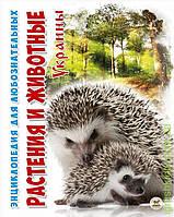 А5 Енціклопедія для допит: Растения и животные Украины