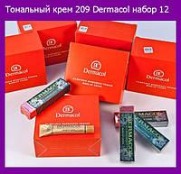 Тональный крем 209 Dermacol (12 шт. в упаковке)