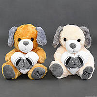 """Мягкая игрушка """"Собачка"""" С 22796 (120) 2 вида, 30см"""