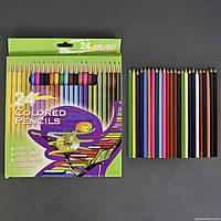 Карандаши цветные 01378 (120) 24шт в упаковке, 24 цвета